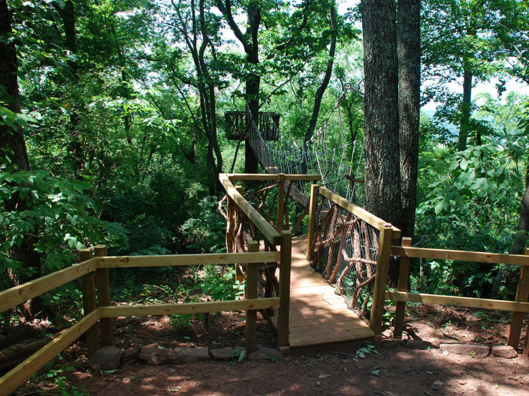Red Mountain Park's Skyhy Treehouse