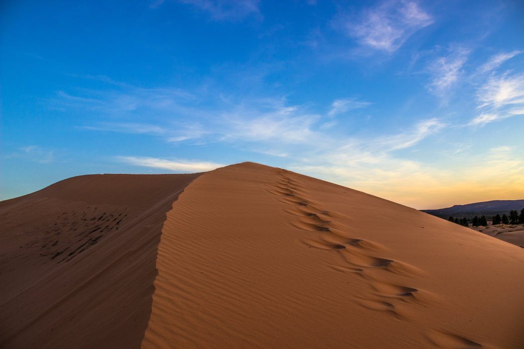 The 3,730-acre Coral Pink Sand Dunes State Park is a giant sandbox for both kids and adults.