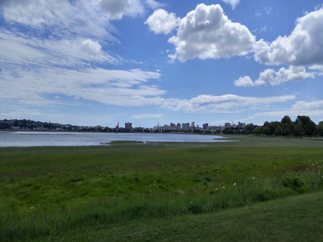 View of Portland's skyline from the trail.