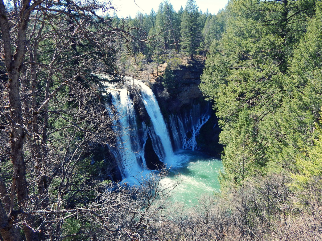 About 100 million gallons of water pass through Burney Falls every day.