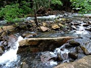 20170605_Tennessee_Chattanooga_Rainbow Lake Trail_Hiking6