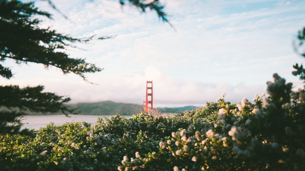 Get a photo near the Golden Gate bridge in San Francisco before your trek down the PCH.