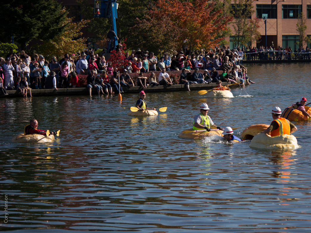 The gourds-turned-boats make for hilarious spectating.