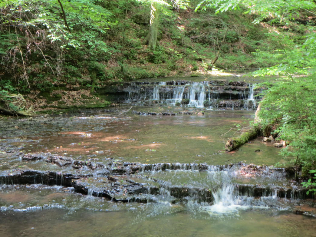 One of several cascades along the Shoal Creek Preserve's Lawson Branch Loop.