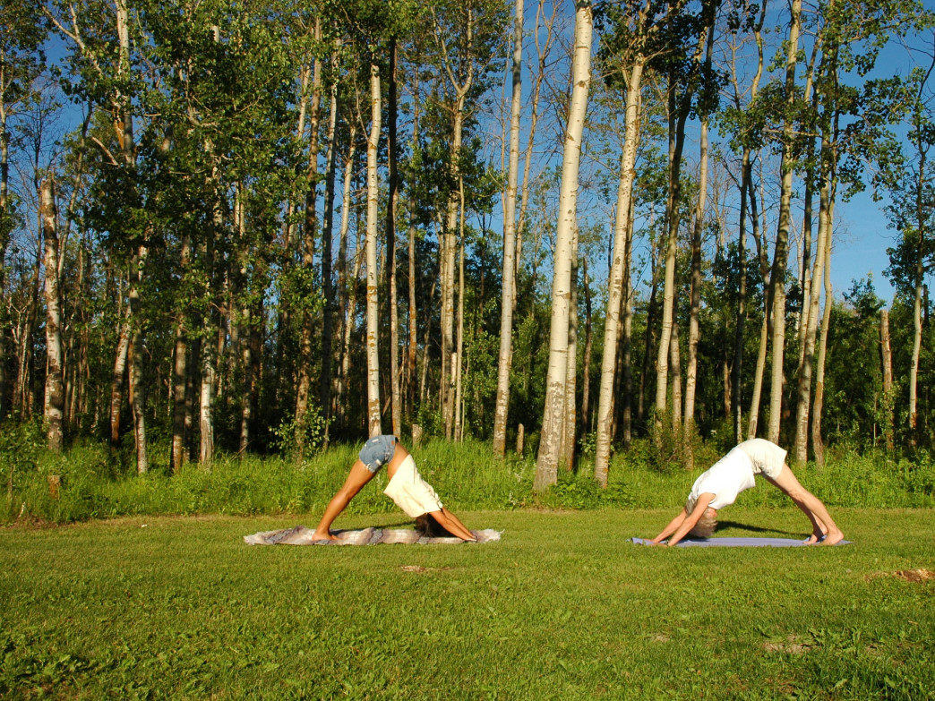 Downward Dog elongates the muscles of the spine and upper back, which is great for climbers.