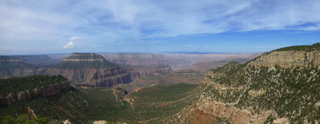 A view from the Rainbow Rim Trail into the Grand Canyon.