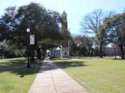 Image for The University of Alabama Quad - Road Running