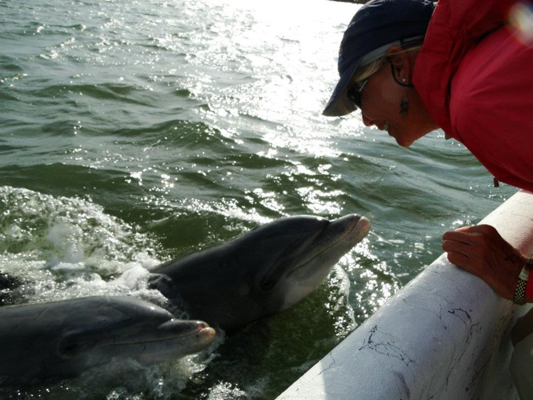 OHH gets Hilton Head Island visitors face-to-face with the local dolphins.
