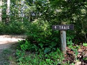20170710_Old Stone Fort State Archaeological Park_Hiking7