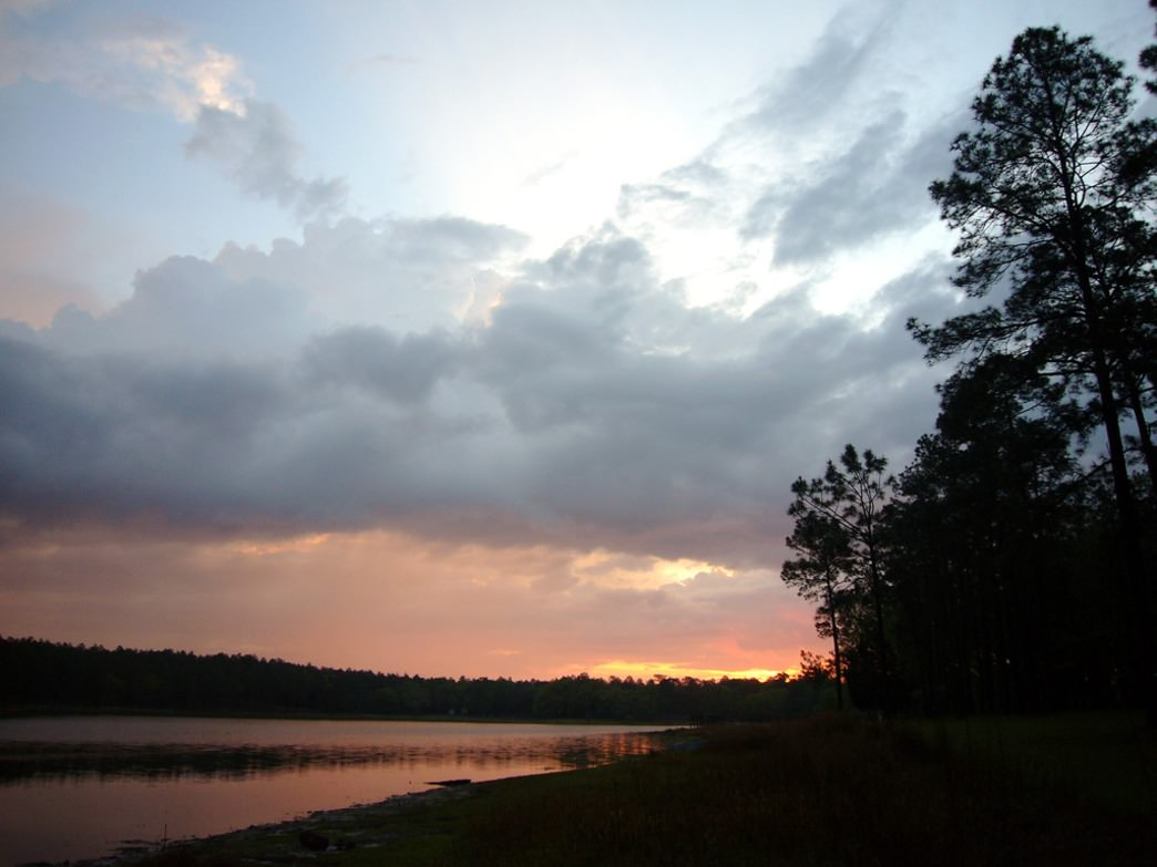 Sunset in the Conecuh National Forest.