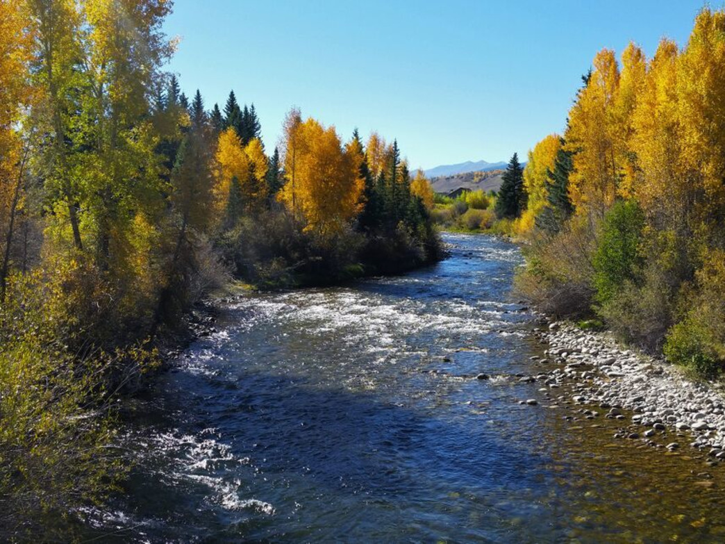 The Middle Section of the Blue River is a 20-stretch of water where trout-fishermen dreams come true