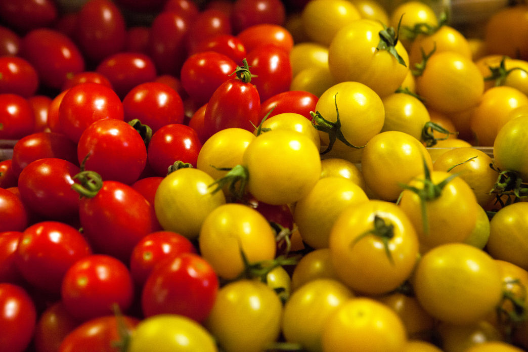 Israeli cherry tomatoes are among the best in the world.