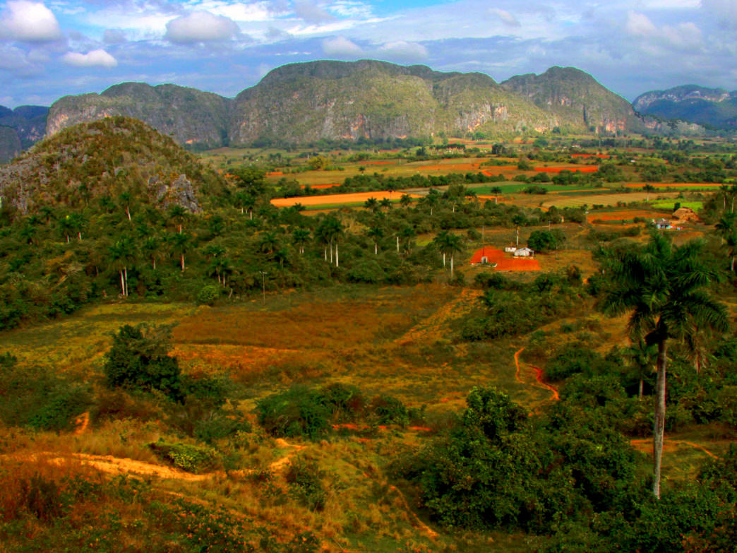 The lush landscapes of Viñales Valley.