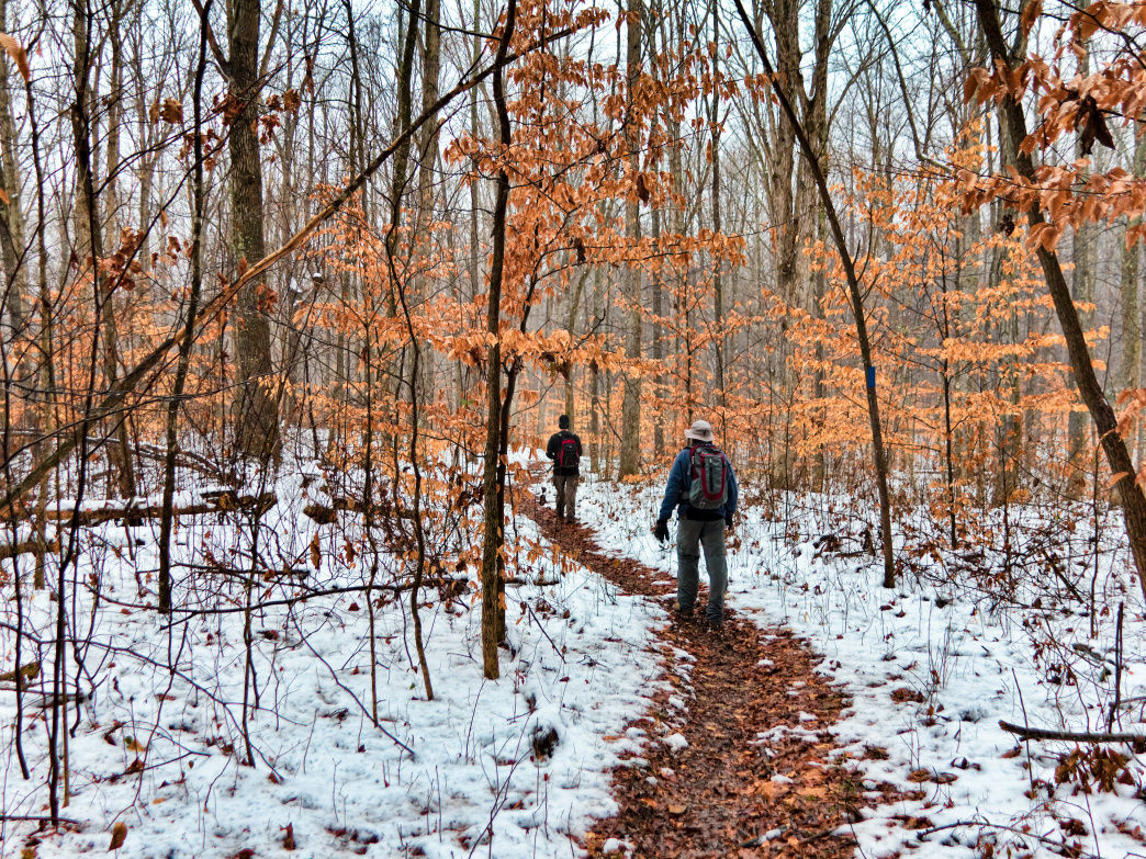 Especially for the few weeks when fall and winter intermingle, the trail is a wonderland.