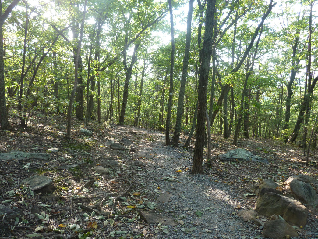 "Despite its ""crowded"" reputation, Crowders Mountain has easy trails that are more off the beaten path.     Rob Glover"