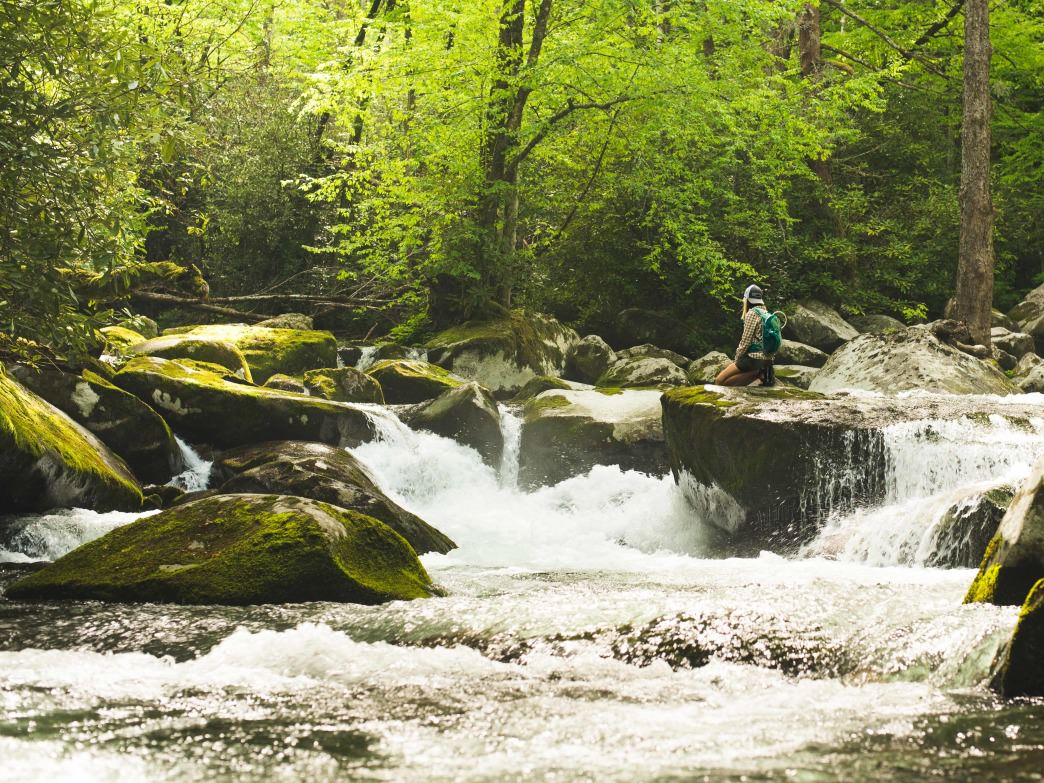 Take every opportunity to step off the trail and explore the busy waters of Big Creek.