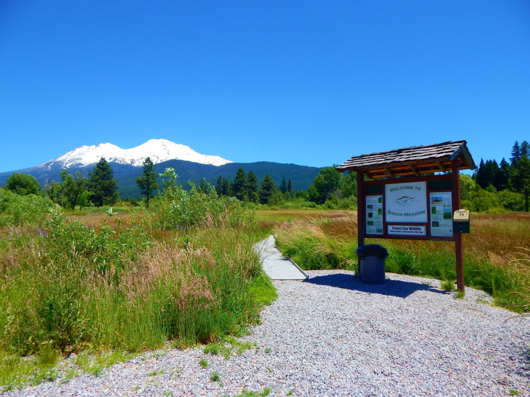 Located in downtown Mt. Shasta, the Sisson Meadows Trail offers 360-degree views of Mt. Shasta, Black Butte, and Mt. Eddy.