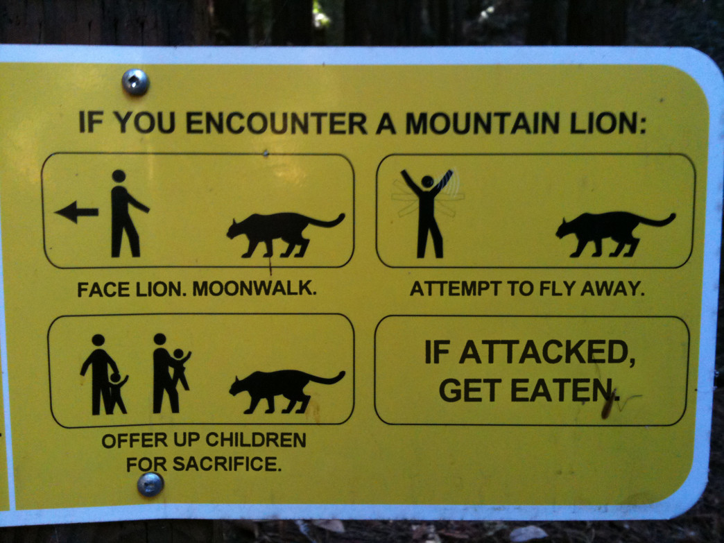 A cheeky take on what to do if you encounter a mountain lion offers some good tips, too.