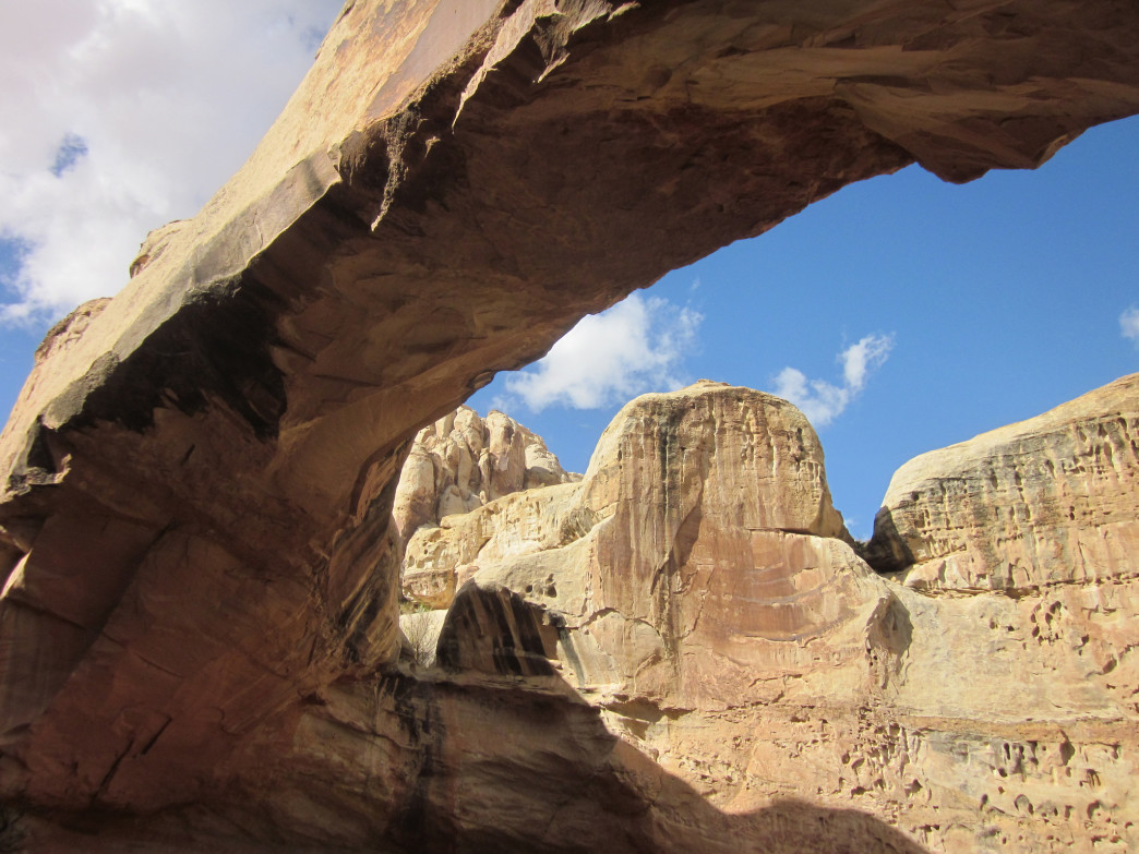 There are many arches in Capitol Reef National Park.