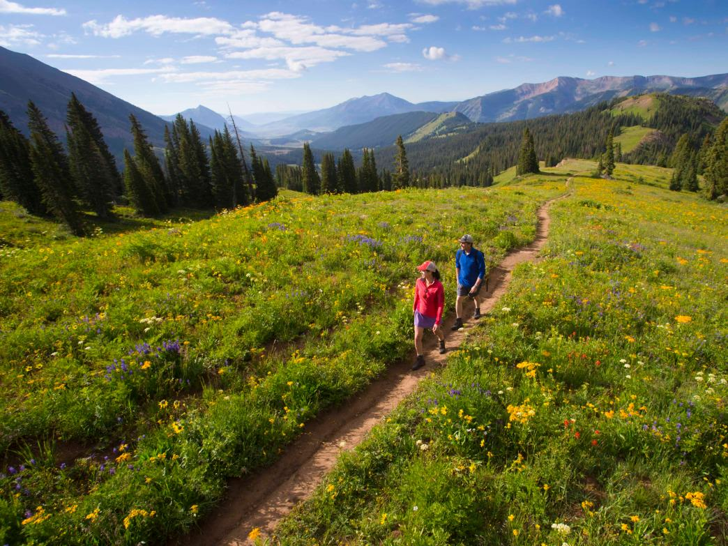 Crested Butte is just one spot in Colorado where wildflowers bloom spectacularly.