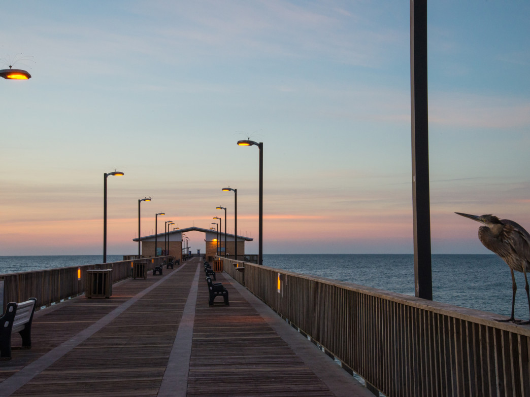 . Fishing at Gulf State Park Pier