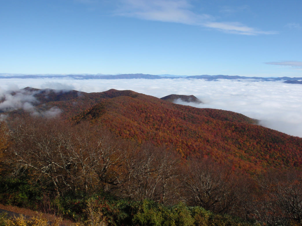 Brasstown Bald offers impressive views from its elevation above 5,000 feet.