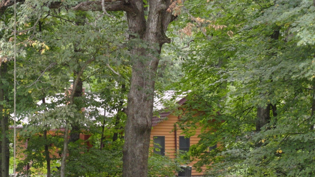 4 Great Cabins In Illinois For A Perfect Weekend Getaway