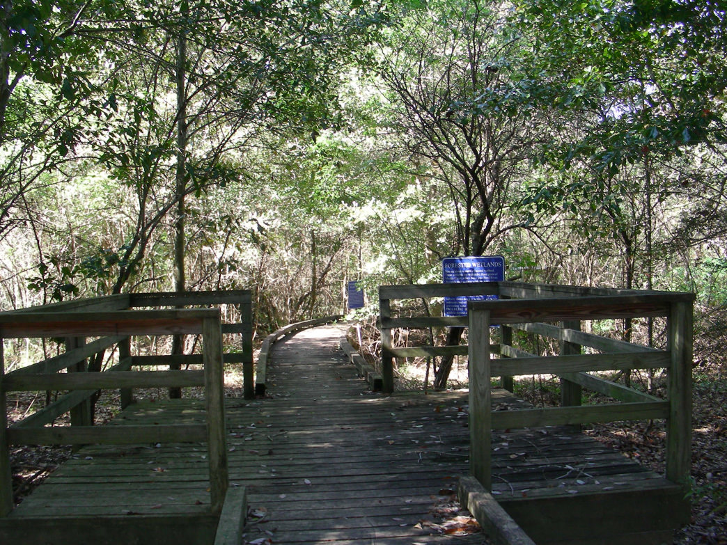 A long boardwalk takes you over the wetlands and the Muddy Creek Interpretive Trail's namesake.