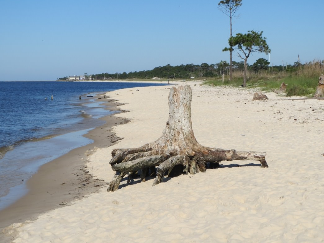 You'll find a quiet little beach at the southern end of the trails at the Dauphin Island Audubon Bird Sanctuary.