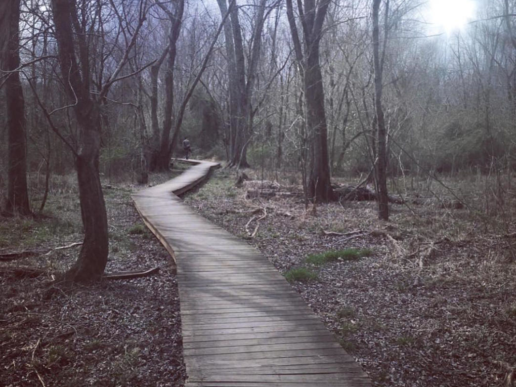 The 3.6-mile Nat Greene Trail has a variety of surfaces, including a section of boardwalk.