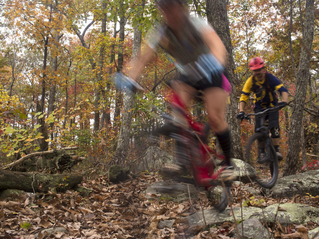 Most of the Chilhowee trails aren't particularly technical... but these aren't flow trails, either.