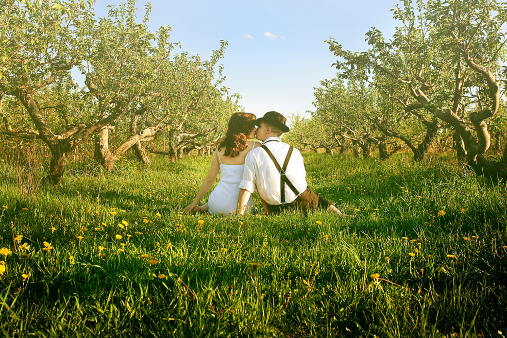 An apple orchard is an idyllic place to fall in love.