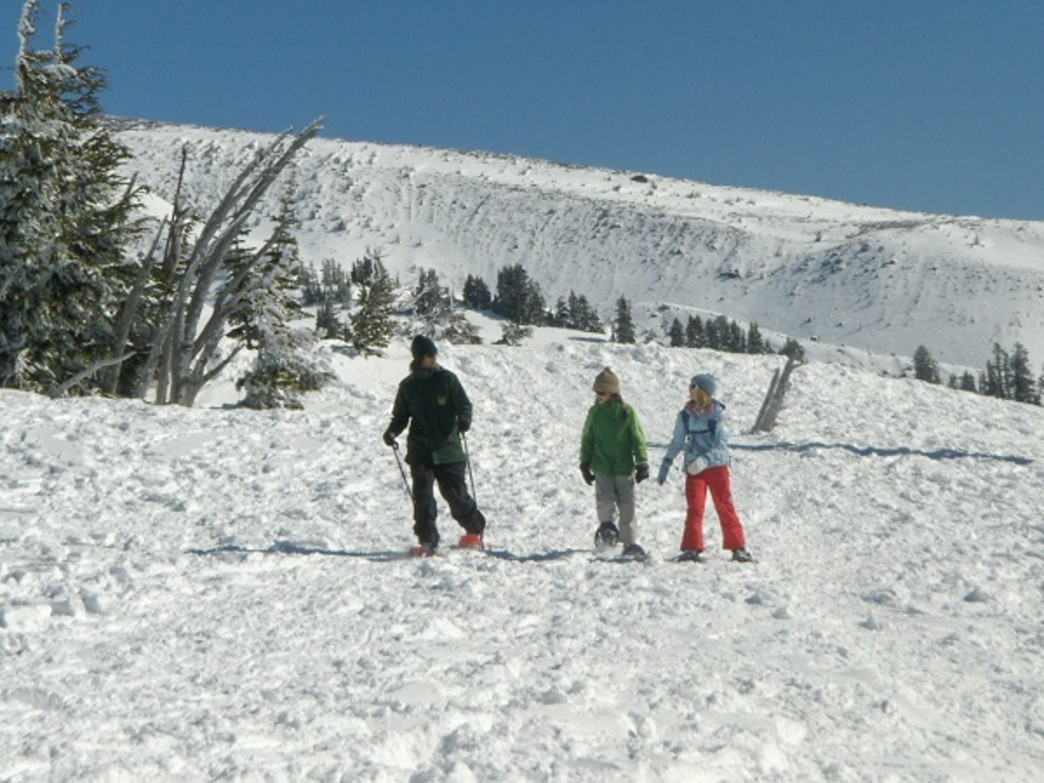 Snowshoeing is a popular activity in the Mount Hood National Forest each winter.