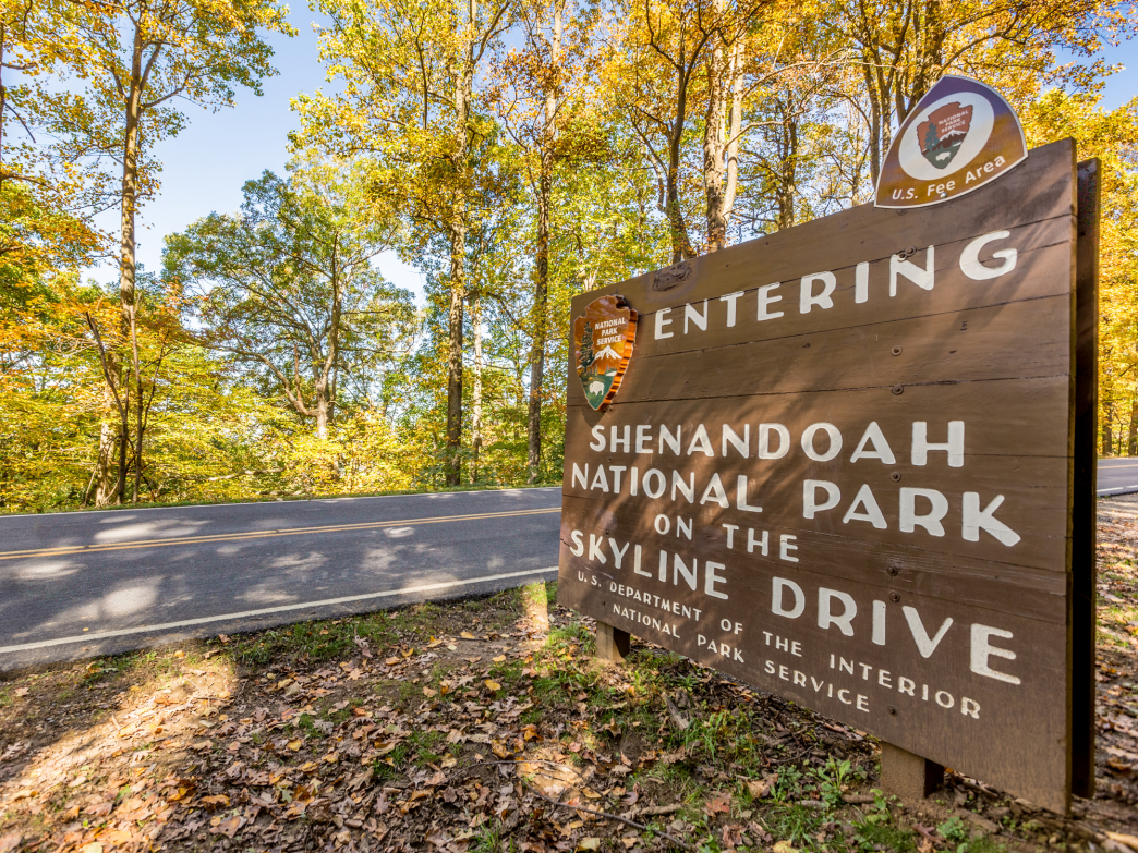 Skyline Drive Scenic Highway winds 105 miles in Shenandoah National Park