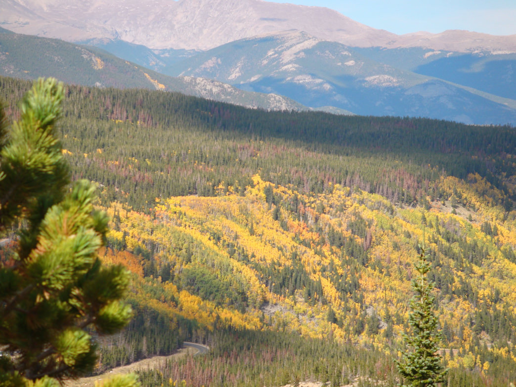Hiking up from the Glacier Gorge Trailhead in Rocky Mountain National Park rewards with this stunning vista.