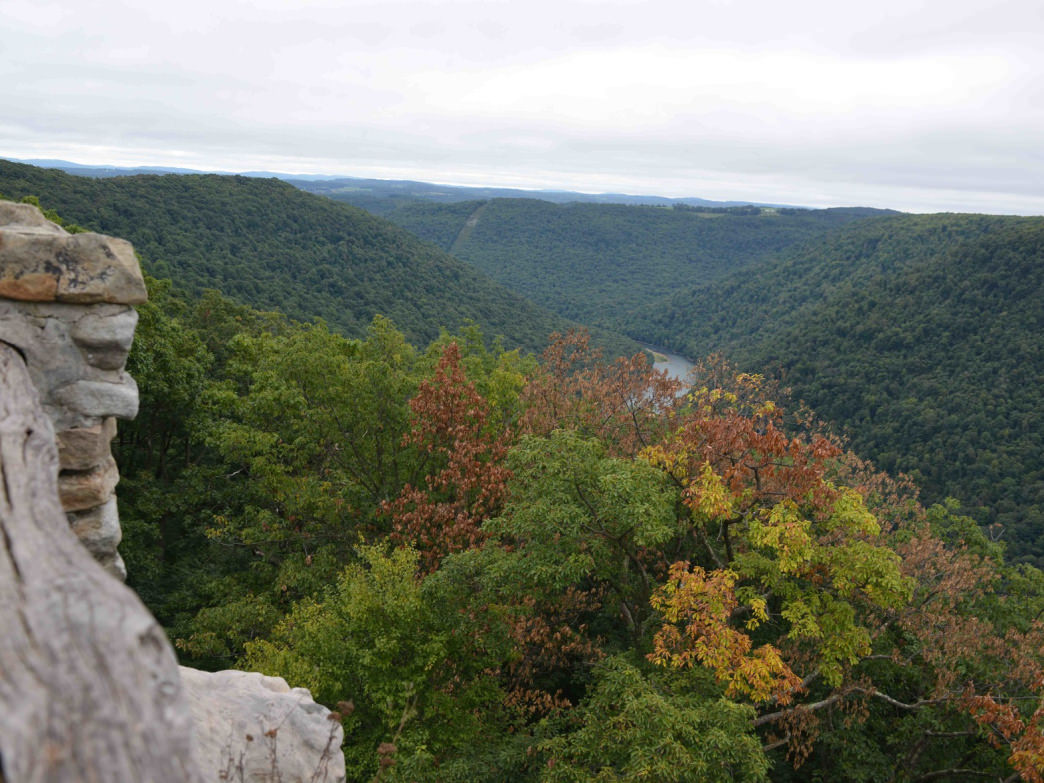 The view from the Coopers Rock Overlook, seen here, draws many people to the forest's south side of I-68, its recreation hub, but the WVU Research Forest on the north side offers hiking and more solitude.