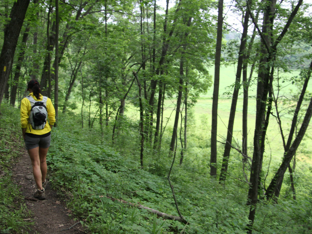 The 10 Best Hikes In Wisconsin