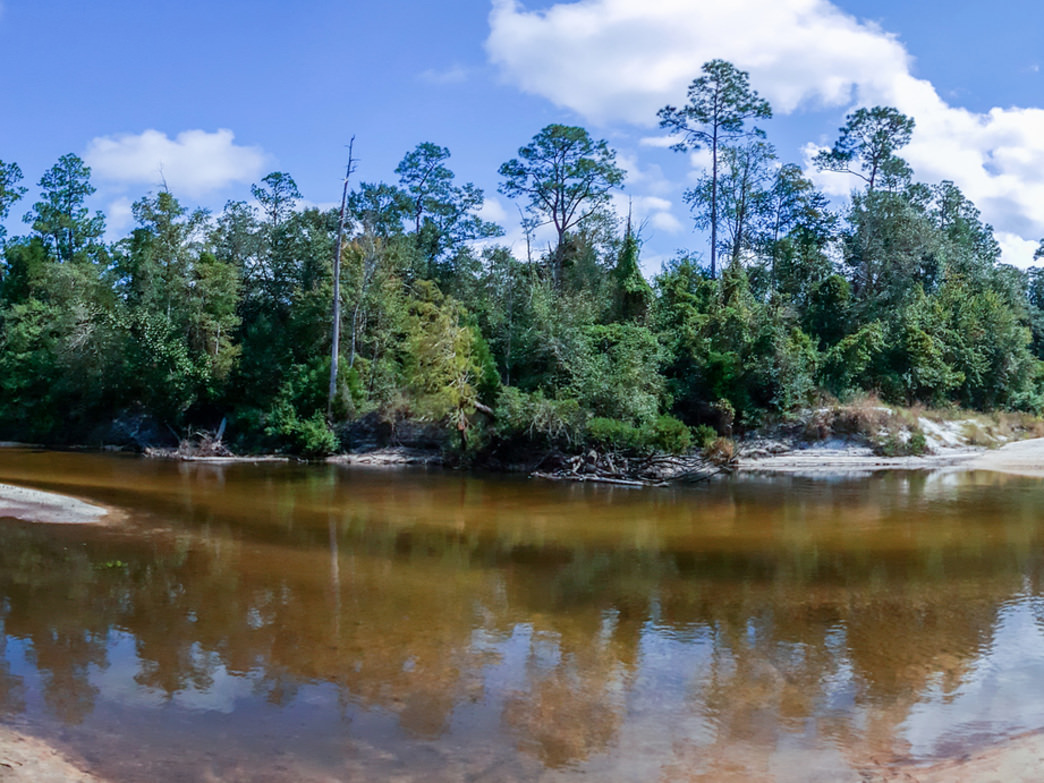 Perdido River Trail is a great 13.5-mile paddle bordering Alabama and Florida.