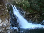 Image for Abrams Falls Hike