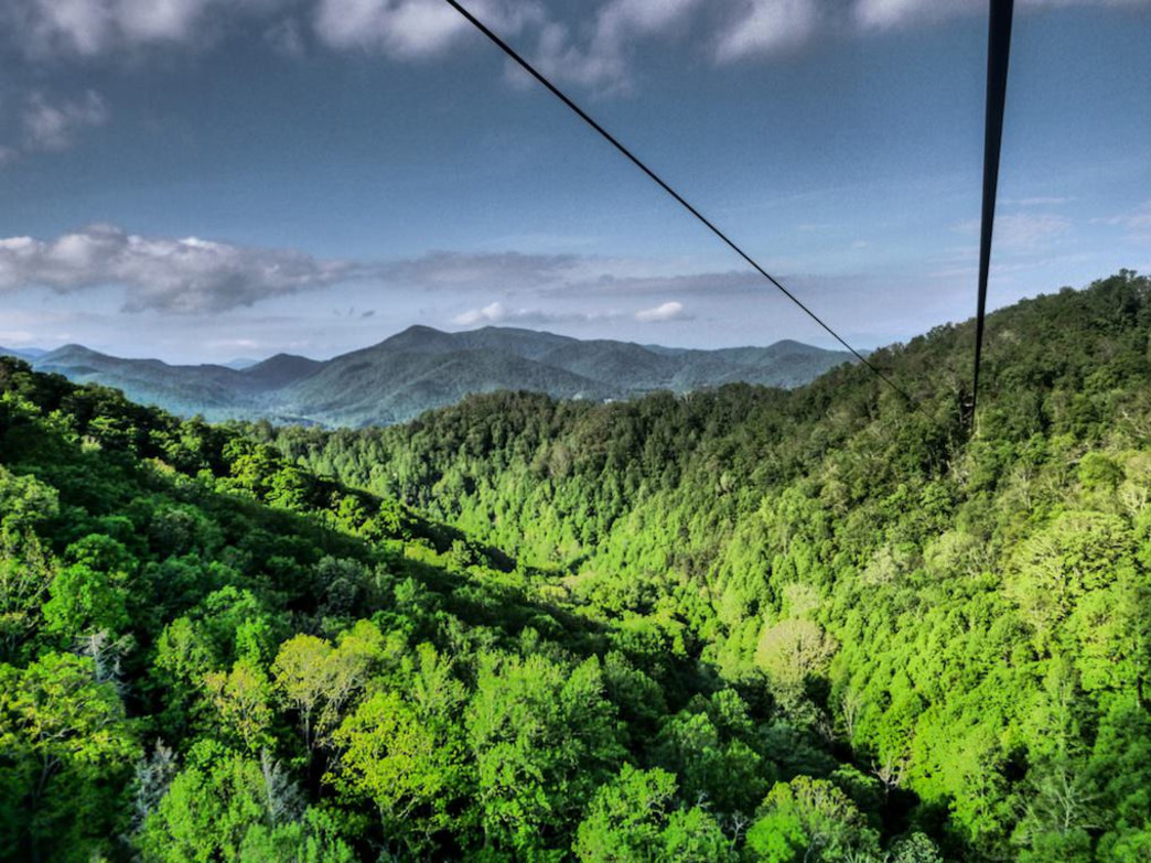 5 Must Do Zipline Adventures Near Asheville