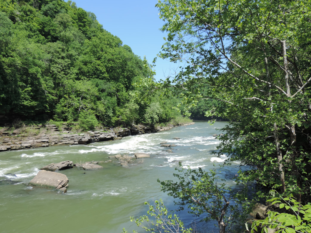 The Caney Fork River is gorgeous and perfect for floating.