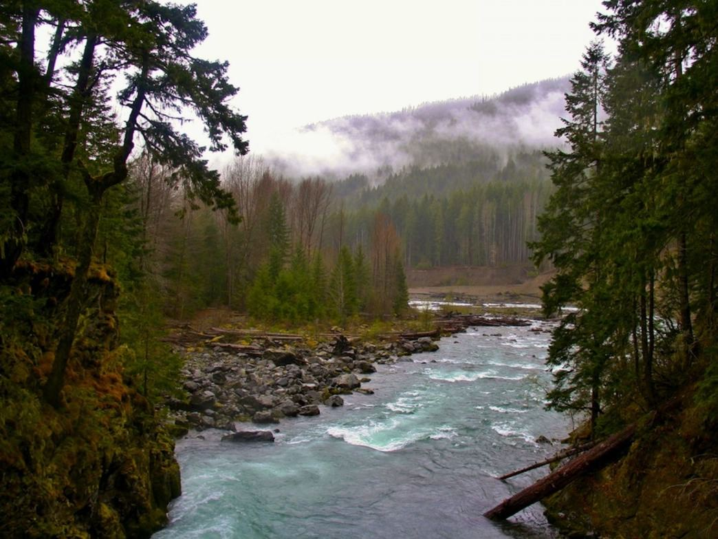 The Elwha River on an overcast winter day