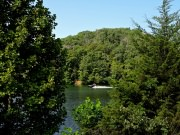 20170716_Melton Hill Park_Trail Running5