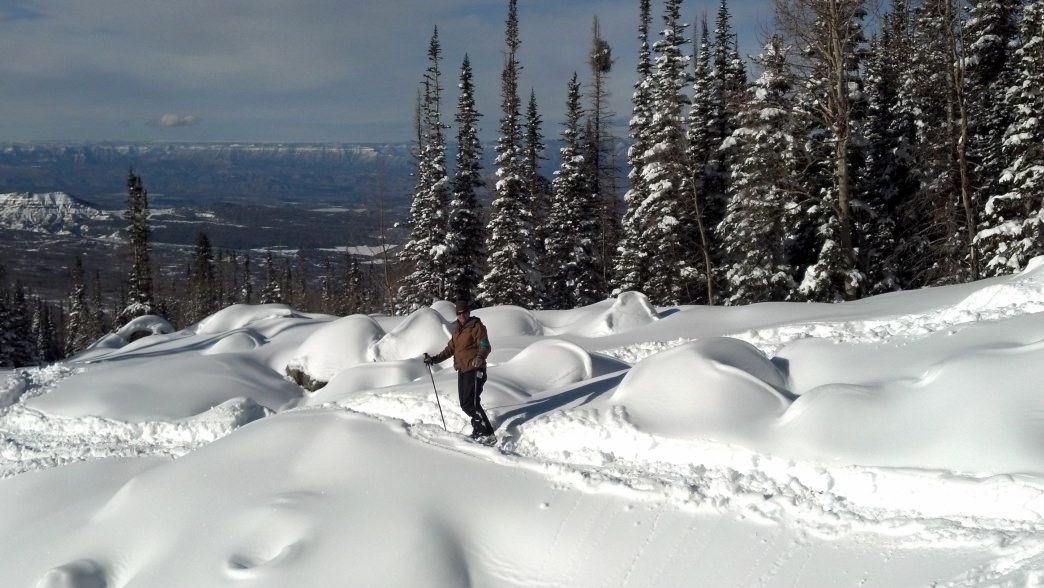 Grand Mesa gets plenty of snow in the winter and is great for both downhill and cross-country skiing.