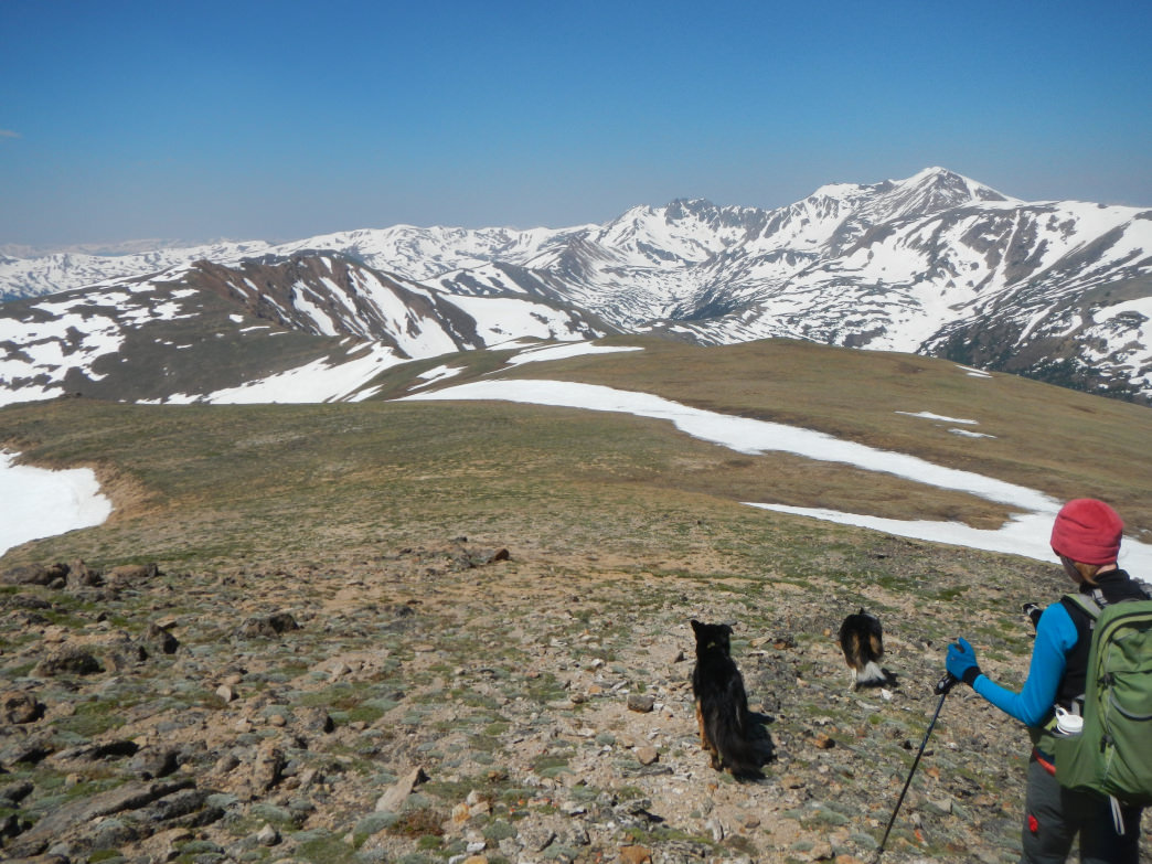 Looking west into Herman Gulch just off the summit of Woods Mountain.      James Dziezynski