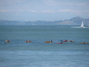 Image for Crissy Field Paddling