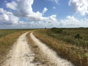 Conservation Levee Trail
