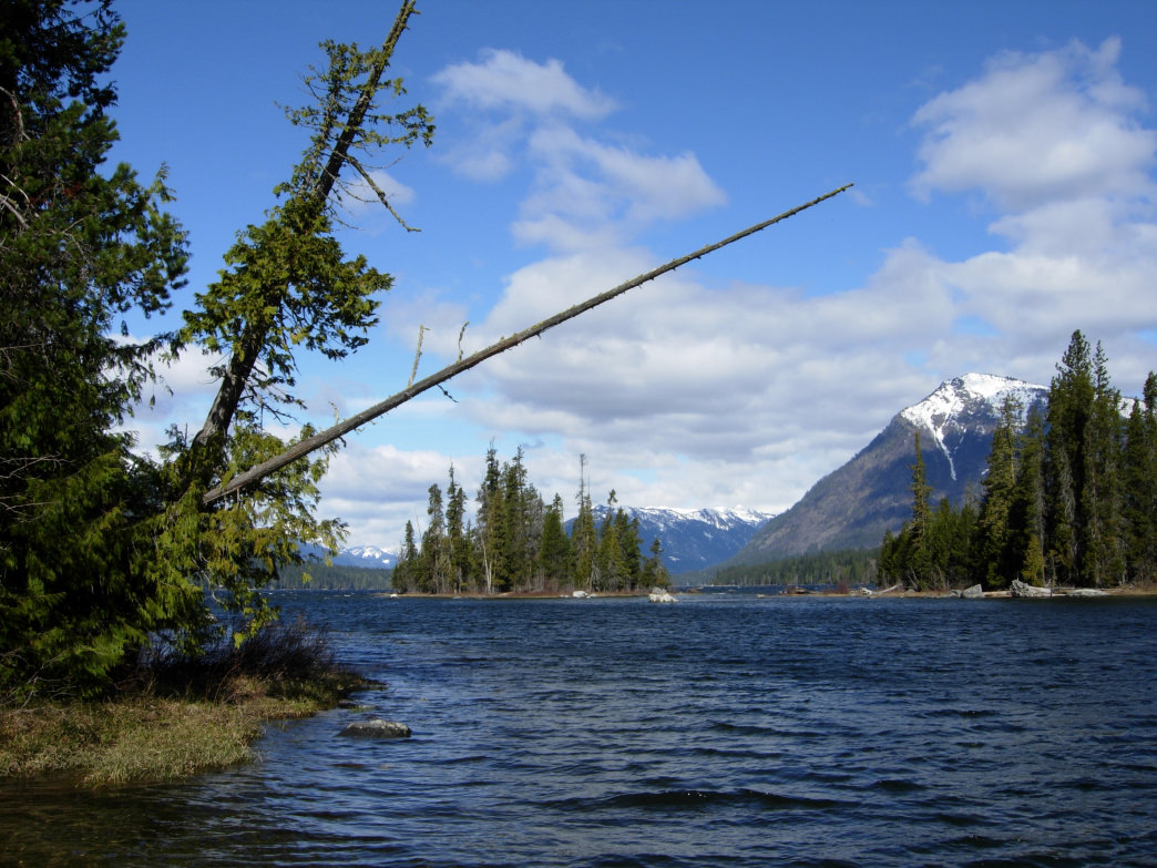 Lake Wenatchee State Park is an excellent spot for paddling in the lake's clear water.