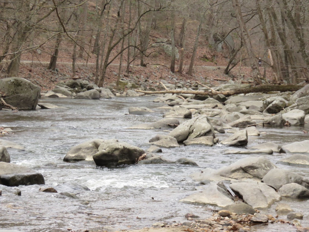 Rock Creek: The Boots Worth Hiking For picture