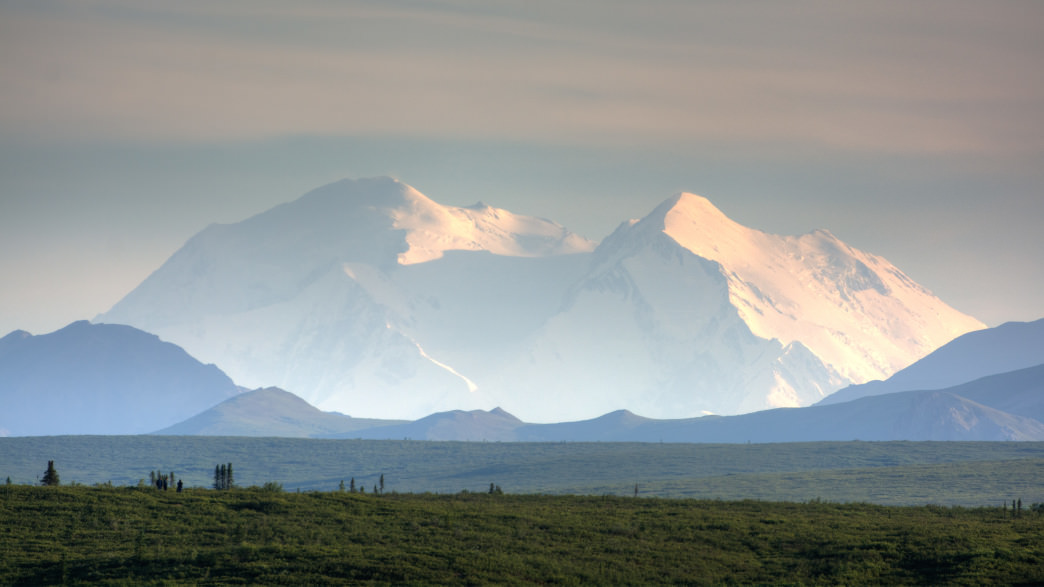 Denali is the highest mountain peak in North America, with a summit elevation of 20,310 feet above sea level.